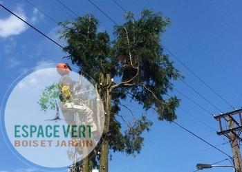 Ets Espace Vert - Abattages et Elagages